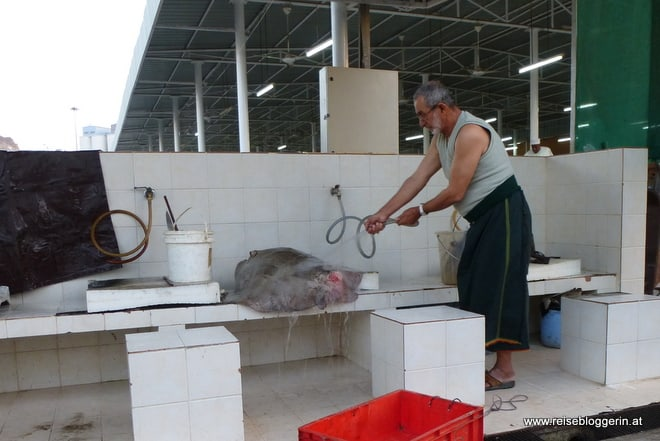Der Fischmarkt in Oman